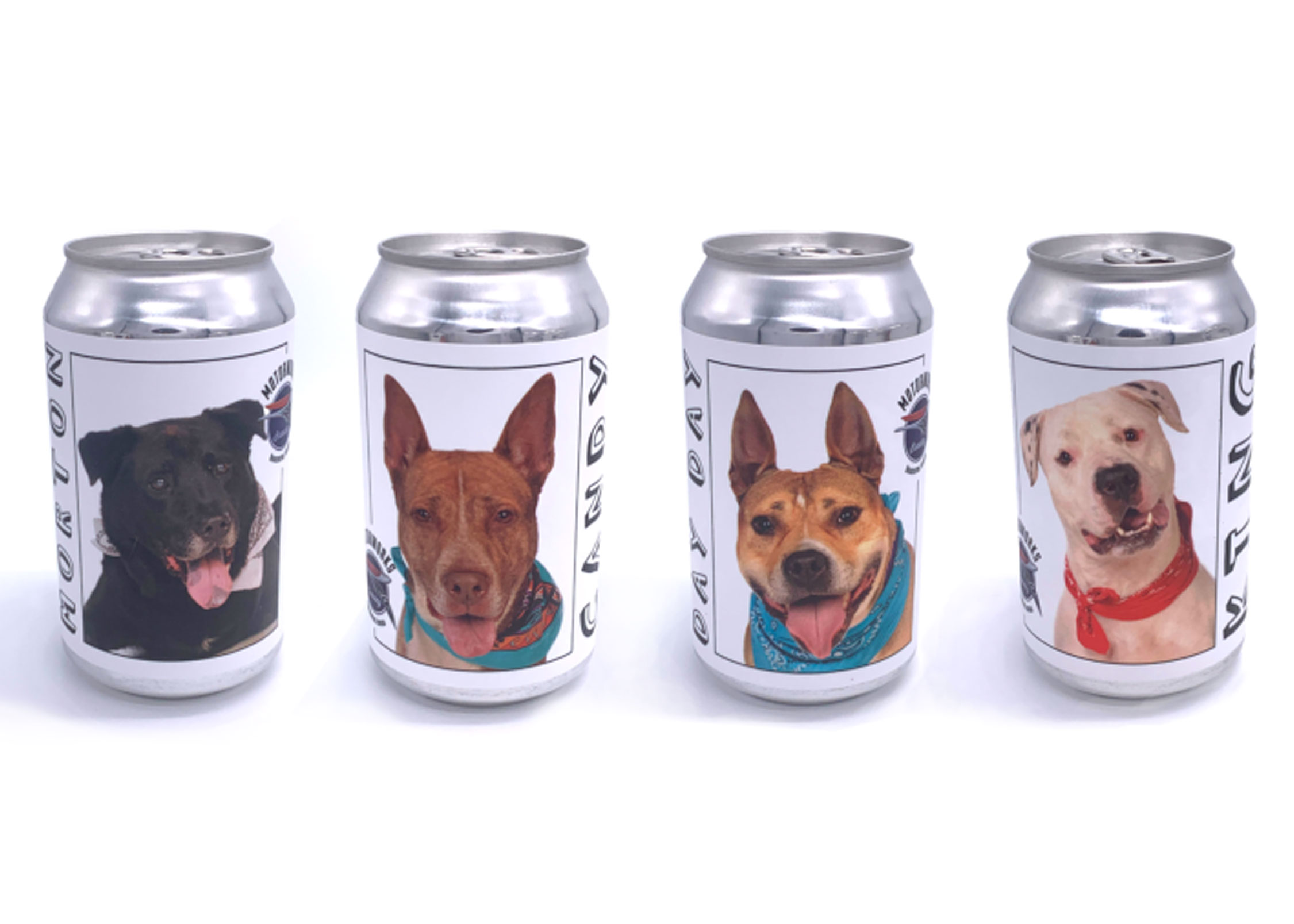 This Brewery Is Featuring Adoptable Dogs on Its Beer Cans